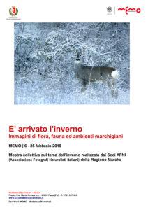 Mostra Afni 2018 Fano