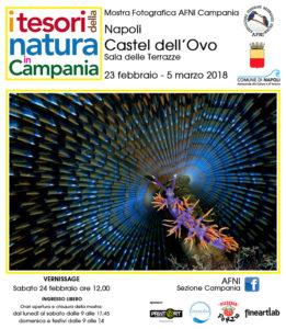 cartolina6_ianniello