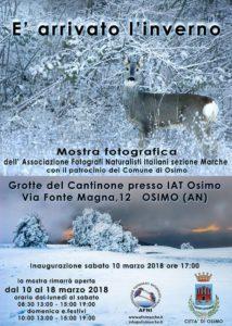 Inverno Osimo - low