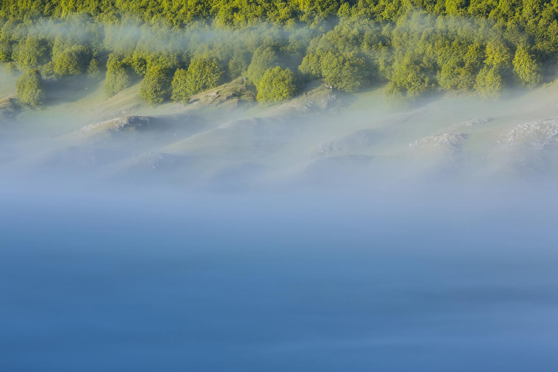 I primi raggi solari di un mattino di primavera dissipano la nebbia, mettendo in risalto una faggeta appenninica. Campo Felice, Abruzzo. 2014. DSLR, 70-200mm