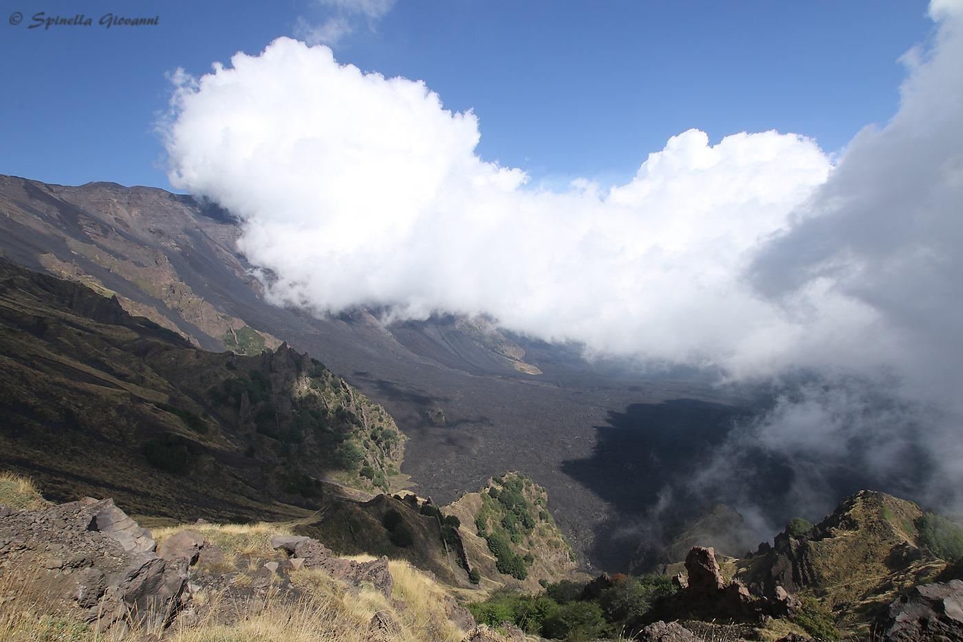 L'autore ha interpretato l'ambiente vulcanico in modo diametralmente opposto all'immagine vincitrice: la sua visione esprime luce, vita, vigore, rinnovamento