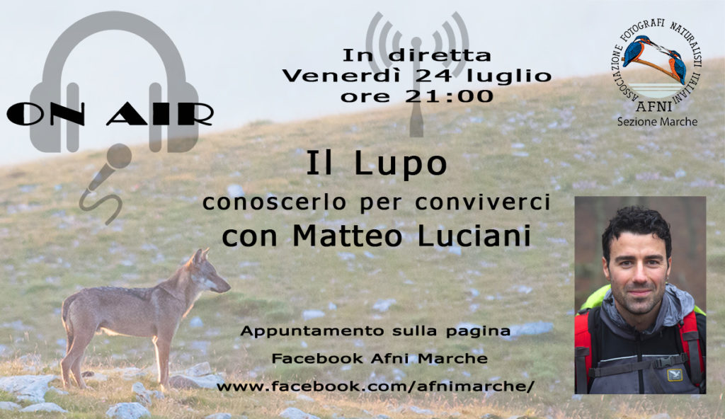 on air Luciani Lupo