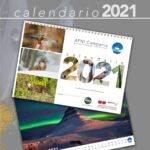 Locandina Calendario 2021