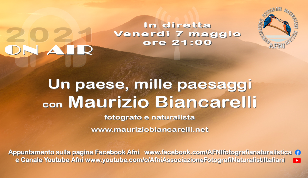 2021-05-07 biancarelli1